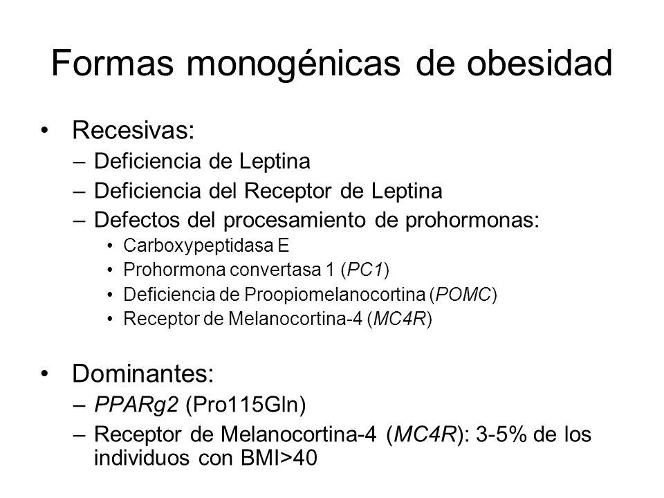 Formas monogénicas de obesidad Recesivas: –Deficiencia de Leptina –Deficiencia del Receptor de Leptina –Defectos del procesamiento de prohormonas: Car