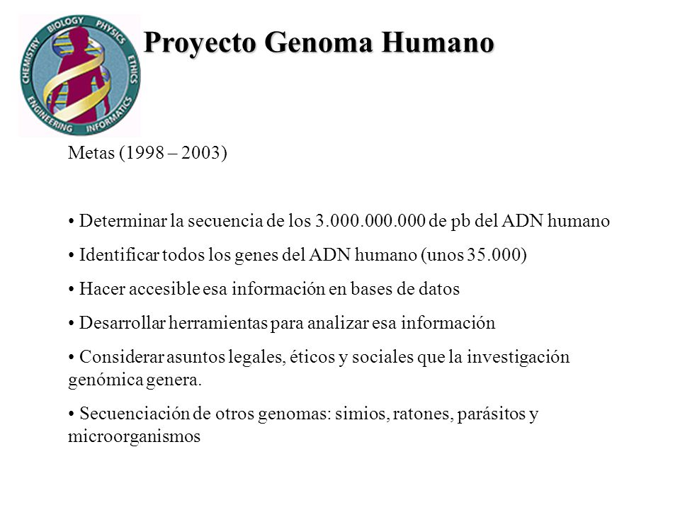 Proyecto Genoma Humano Metas (1998 – 2003) Determinar la secuencia de los 3.000.000.000 de pb del ADN humano Identificar todos los genes del ADN human