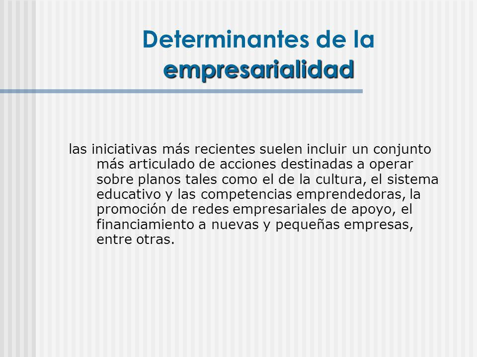 empresarialidad Determinantes de la empresarialidad las iniciativas más recientes suelen incluir un conjunto más articulado de acciones destinadas a o
