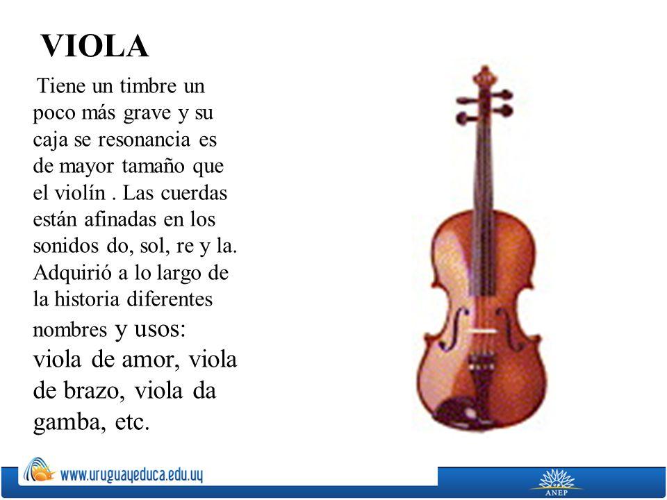 VIOLA Tiene un timbre un poco más grave y su caja se resonancia es de mayor tamaño que el violín. Las cuerdas están afinadas en los sonidos do, sol, r