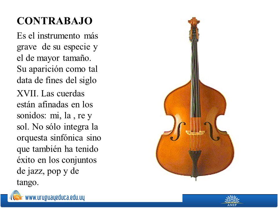 CONTRABAJO Es el instrumento más grave de su especie y el de mayor tamaño. Su aparición como tal data de fines del siglo XVII. Las cuerdas están afina