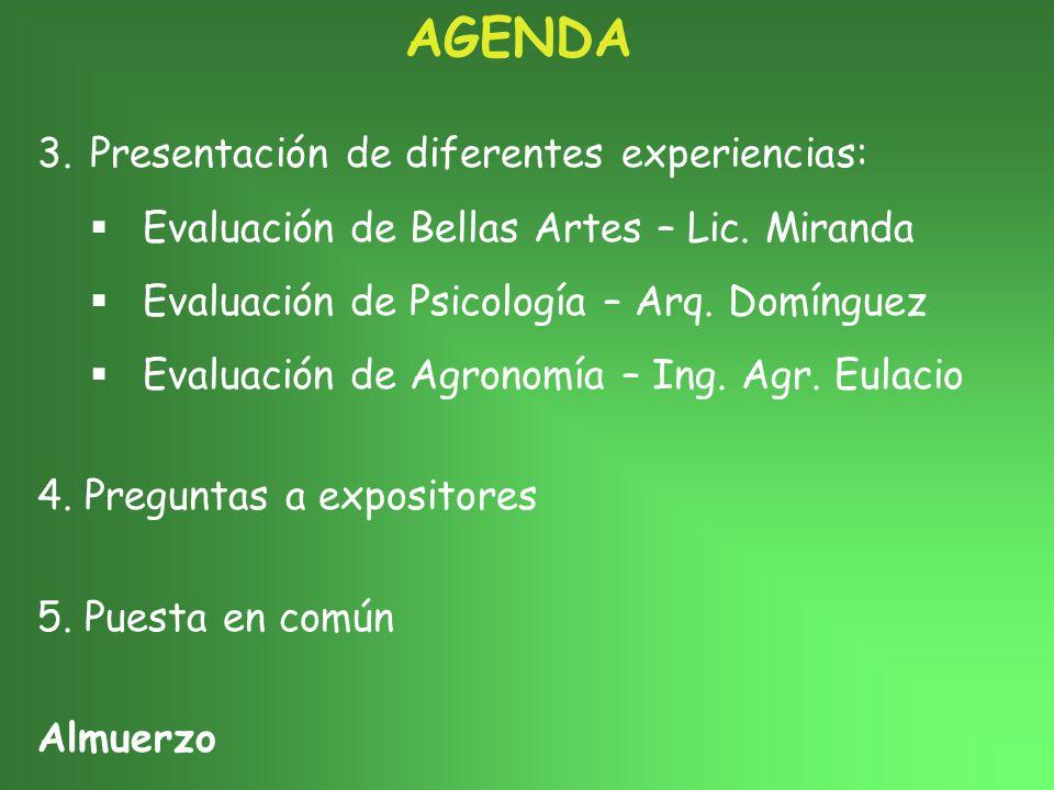 AGENDA 3.Presentación de diferentes experiencias: Evaluación de Bellas Artes – Lic.