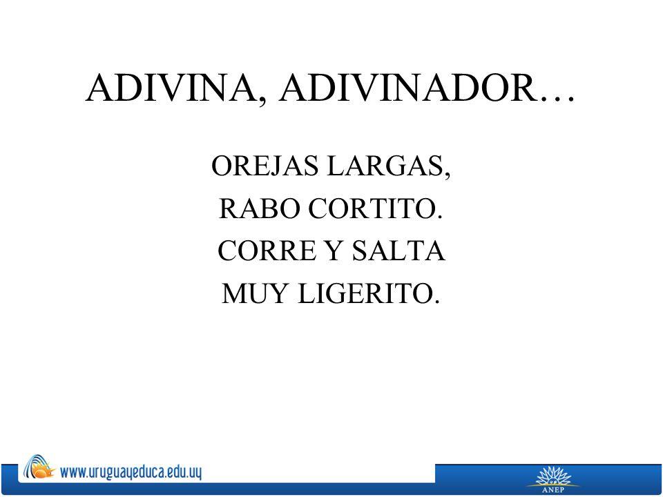 ADIVINA, ADIVINADOR… OREJAS LARGAS, RABO CORTITO. CORRE Y SALTA MUY LIGERITO.