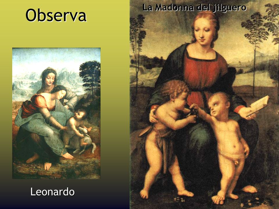 La Madonna del jilguero Observa Leonardo