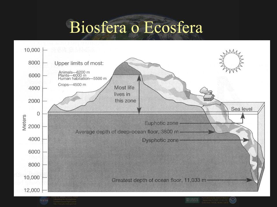 Biología y Geociencias –Biosfera: Cambios en la superficie, atmósfera y océanos por la presencia de vida –Recursos Naturales –Los factores antropogéni