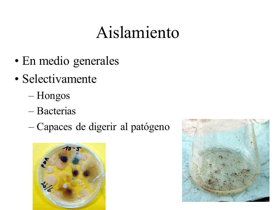 Aislamiento En medio generales Selectivamente – Hongos – Bacterias – Capaces de digerir al patógeno