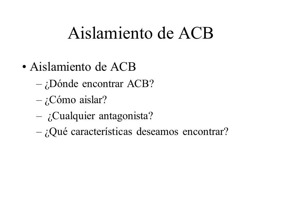 Aislamiento de ACB – ¿Dónde encontrar ACB? – ¿Cómo aislar? – ¿Cualquier antagonista? – ¿Qué características deseamos encontrar?