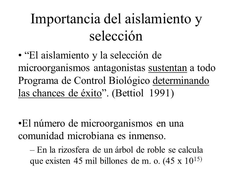 Importancia del aislamiento y selección El aislamiento y la selección de microorganismos antagonistas sustentan a todo Programa de Control Biológico d