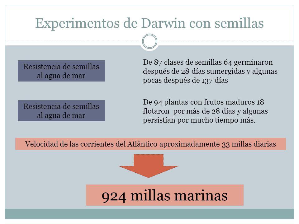 Experimentos de Darwin con semillas Resistencia de semillas al agua de mar De 87 clases de semillas 64 germinaron después de 28 días sumergidas y algu