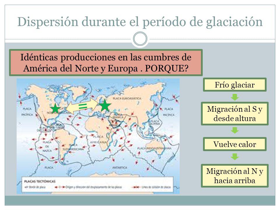 Dispersión durante el período de glaciación Idénticas producciones en las cumbres de América del Norte y Europa. PORQUE? = Frío glaciar Migración al S
