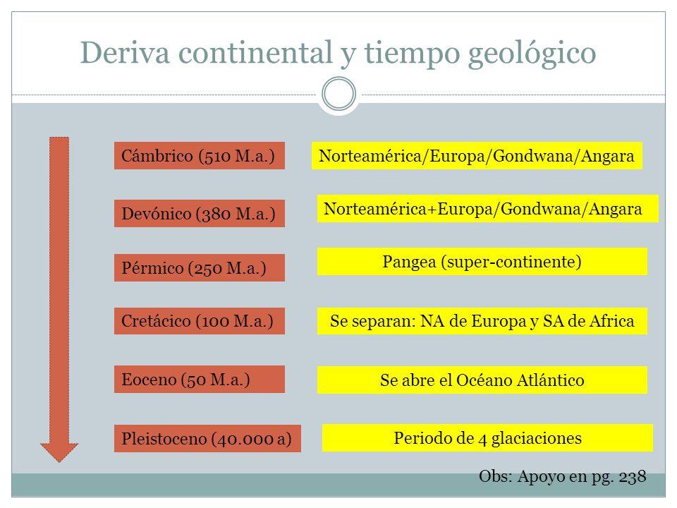 Deriva continental y tiempo geológico Pleistoceno (40.000 a) Cámbrico (510 M.a.)Norteamérica/Europa/Gondwana/Angara Devónico (380 M.a.) Norteamérica+E