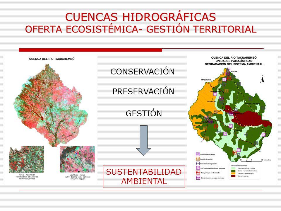 CUENCAS HIDROGRÁFICAS OFERTA ECOSISTÉMICA- GESTIÓN TERRITORIAL CONSERVACIÓN PRESERVACIÓN GESTIÓN SUSTENTABILIDAD AMBIENTAL