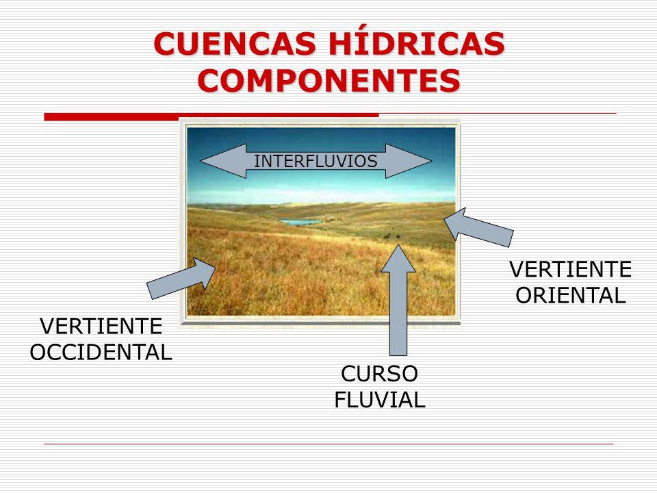 CUENCAS HÍDRICAS COMPONENTES INTERFLUVIOS VERTIENTE OCCIDENTAL VERTIENTE ORIENTAL CURSO FLUVIAL
