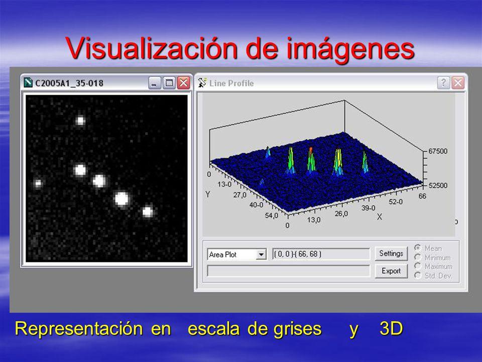 Visualización de imágenes Representación en escala de grises y 3D