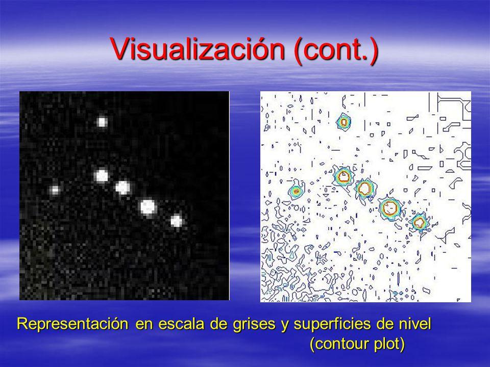 Visualización (cont.) Representación en escala de grises y superficies de nivel (contour plot) (contour plot)