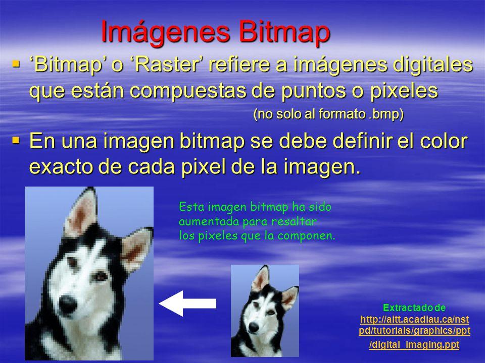 Imágenes Bitmap Bitmap o Raster refiere a imágenes digitales que están compuestas de puntos o pixeles Bitmap o Raster refiere a imágenes digitales que
