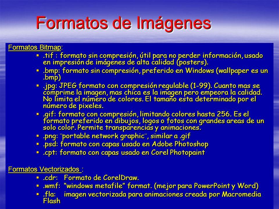 Formatos de Imágenes Formatos Bitmap:.tif : formato sin compresión, útil para no perder información, usado en impresión de imágenes de alta calidad (p