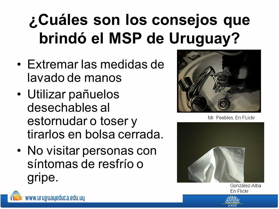 ¿Cuáles son los consejos que brindó el MSP de Uruguay? Extremar las medidas de lavado de manos Utilizar pañuelos desechables al estornudar o toser y t