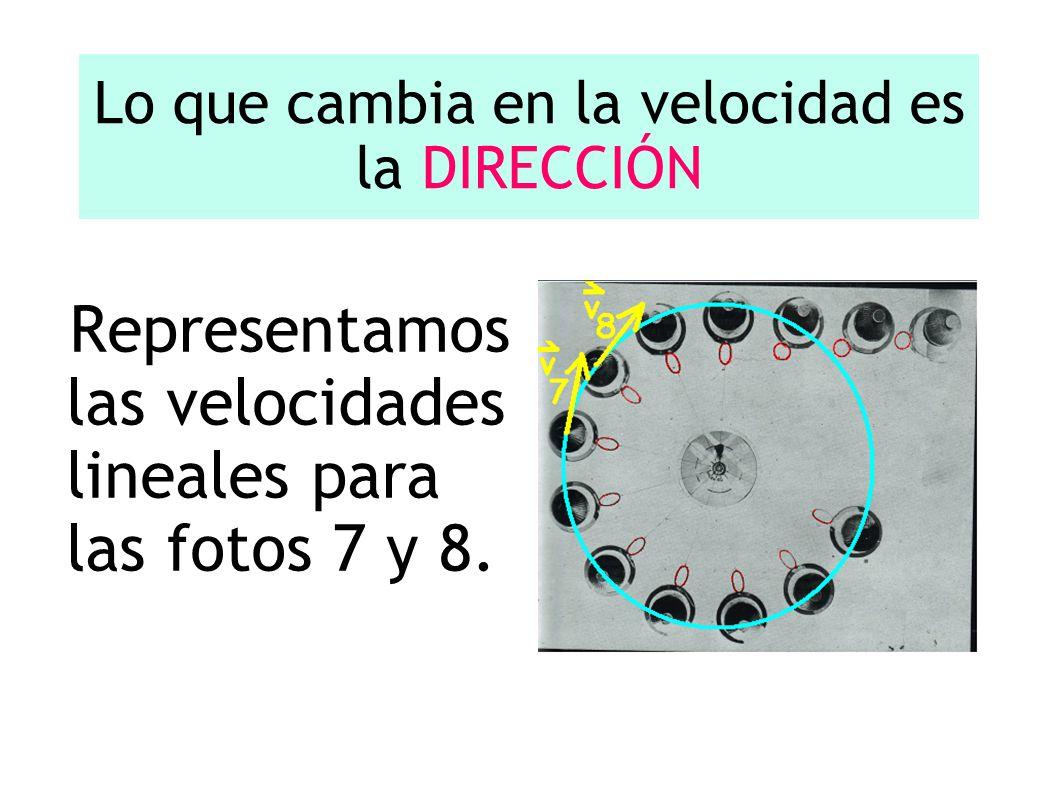 Lo que cambia en la velocidad es la DIRECCIÓN Representamos las velocidades lineales para las fotos 7 y 8.