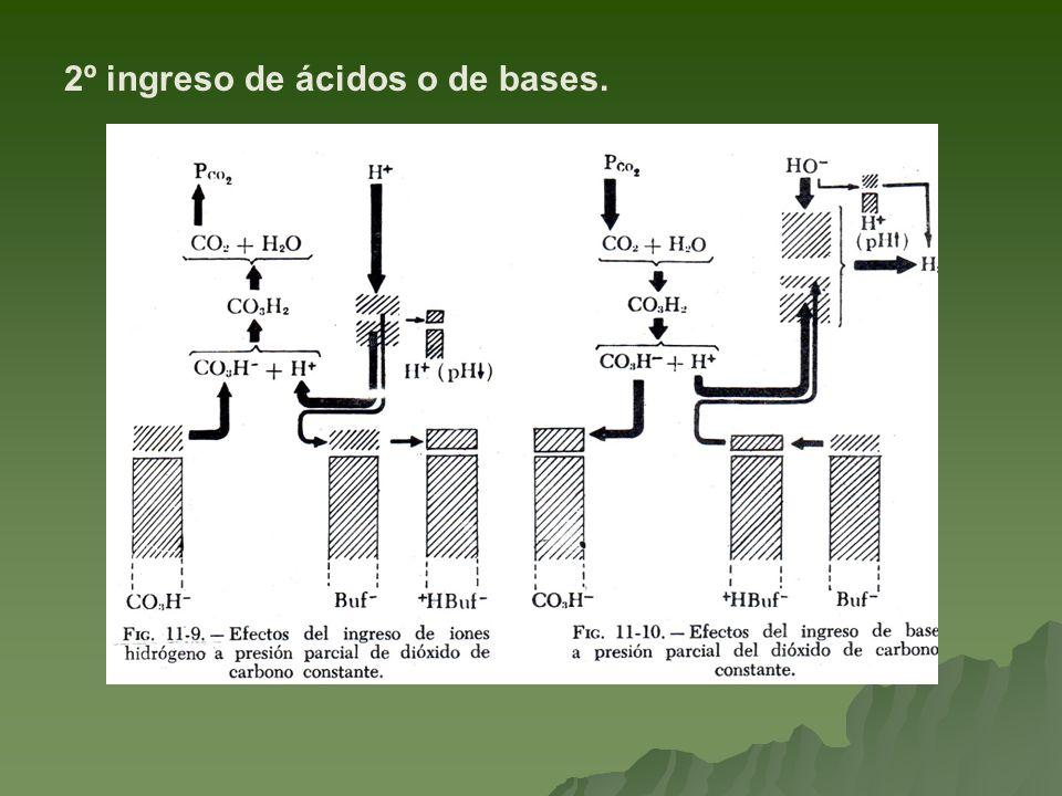 2º ingreso de ácidos o de bases.