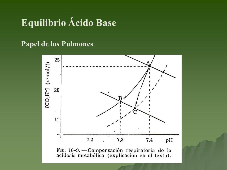 Equilibrio Ácido Base Papel de los Pulmones