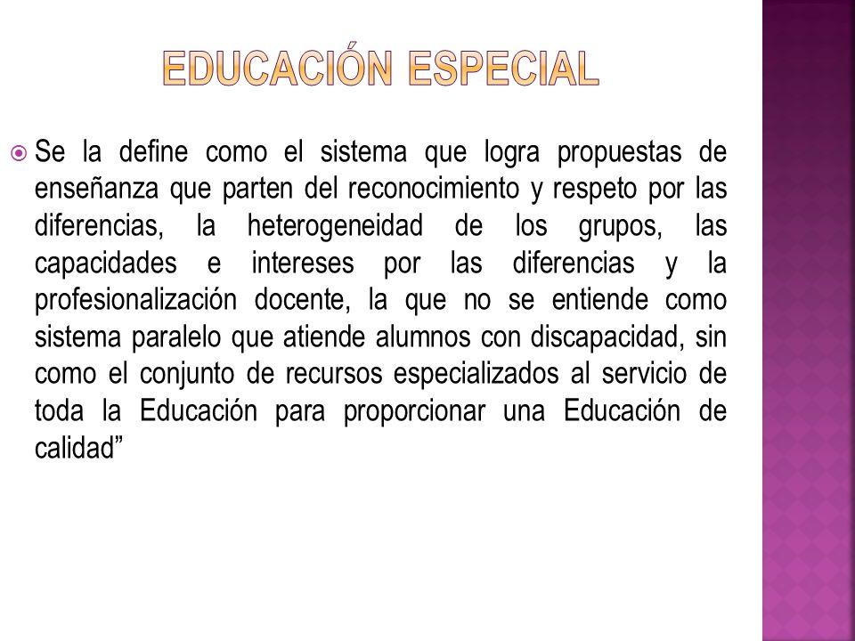 Se la define como el sistema que logra propuestas de enseñanza que parten del reconocimiento y respeto por las diferencias, la heterogeneidad de los g