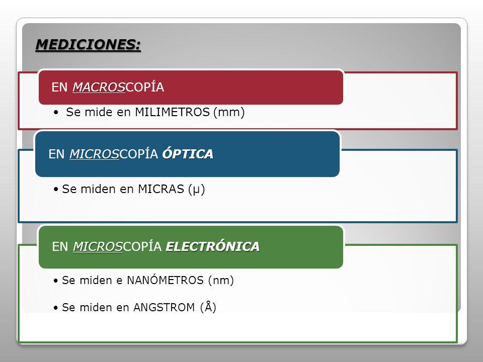 Se mide en MILÍMETROS (mm) MACROS EN MACROSCOPÍA Se miden en MICRAS (µ) MICROSÓPTICA EN MICROSCOPÍA ÓPTICA Se miden e NANÓMETROS (nm) Se miden en ANGSTROM (Å) MICROSELECTRÓNICA EN MICROSCOPÍA ELECTRÓNICA MEDICIONES: