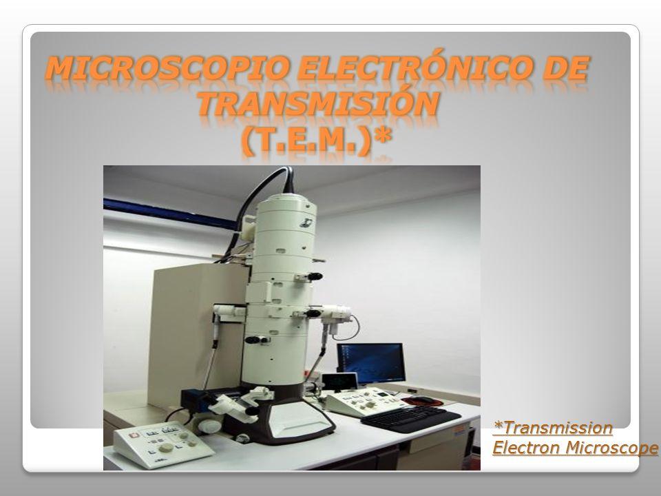 *Transmission Electron Microscope