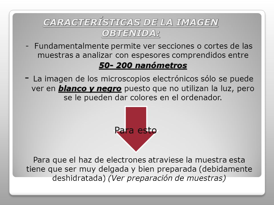 - Fundamentalmente permite ver secciones o cortes de las muestras a analizar con espesores comprendidos entre 50- 200 nanómetros 50- 200 nanómetros blanco y negro - La imagen de los microscopios electrónicos sólo se puede ver en blanco y negro puesto que no utilizan la luz, pero se le pueden dar colores en el ordenador.
