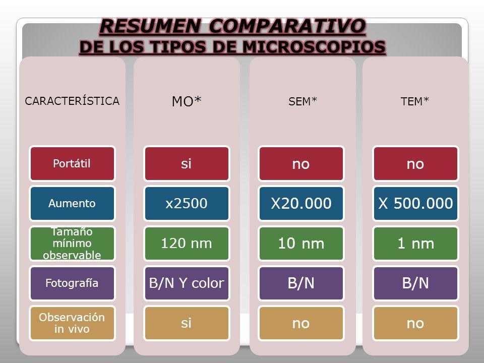 CARACTERÍSTICA PortátilAumento Tamaño mínimo observable Fotografía Observación in vivo MO* six2500120 nmB/N Y colorsi SEM* noX20.00010 nmB/Nno TEM* no X 500.000 1 nmB/Nno