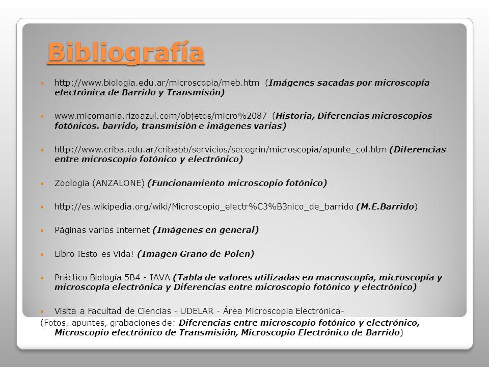 Bibliografía http://www.biologia.edu.ar/microscopia/meb.htm (Imágenes sacadas por microscopía electrónica de Barrido y Transmisón) www.micomania.rizoa