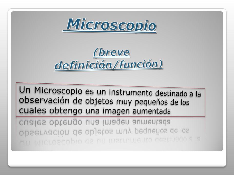 A) B) C) D) Morfologías típicas de los procariotas marinos.