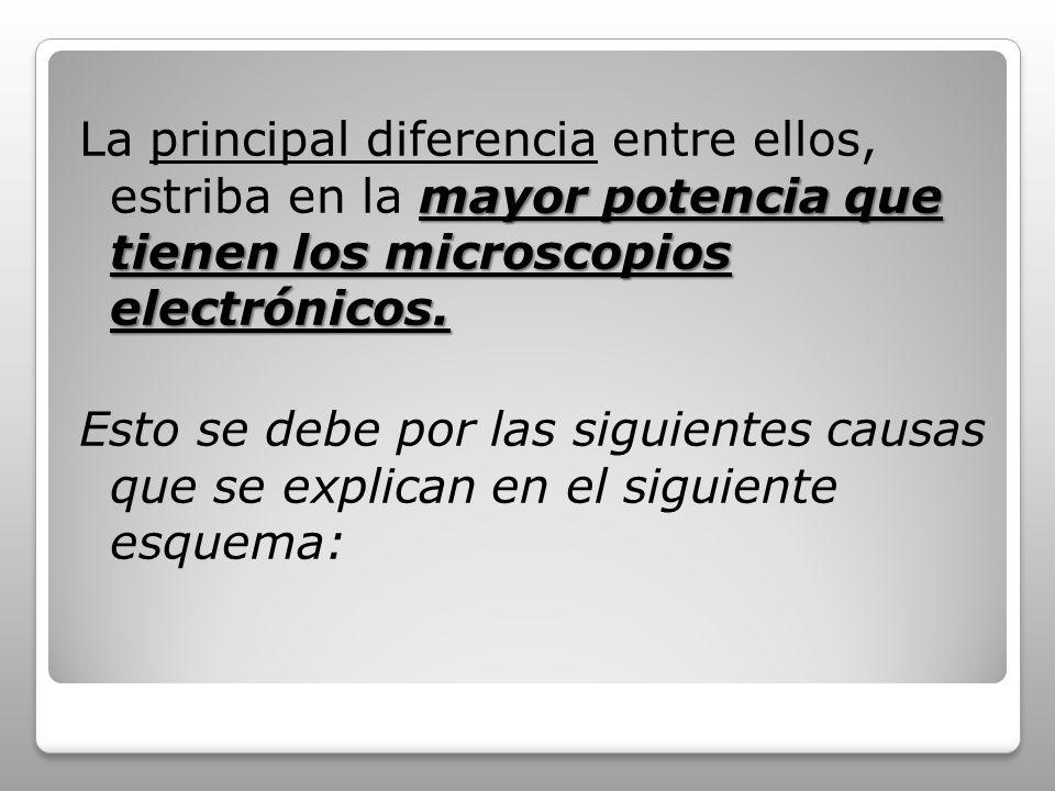 mayor potencia que tienen los microscopios electrónicos. La principal diferencia entre ellos, estriba en la mayor potencia que tienen los microscopios