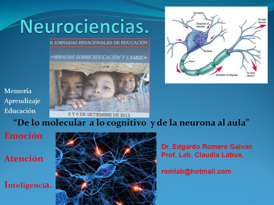 Memoria Aprendizaje Educación De lo molecular a lo cognitivo y de la neurona al aula Emoción Atención I nteligenci a. Dr. Edgardo Romero Galván Prof.