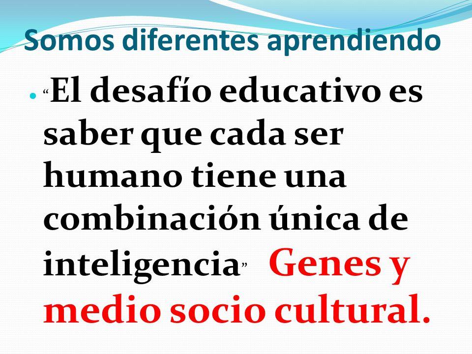 Somos diferentes aprendiendo El desafío educativo es saber que cada ser humano tiene una combinación única de inteligencia Genes y medio socio cultura