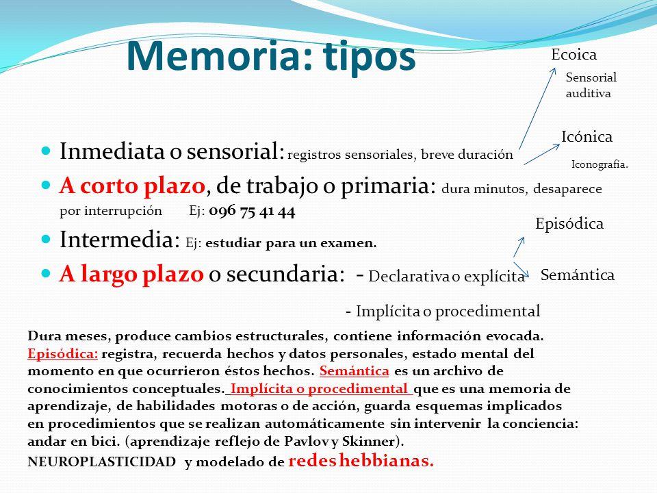 Memoria: tipos Inmediata o sensorial: registros sensoriales, breve duración A corto plazo, de trabajo o primaria: dura minutos, desaparece por interru