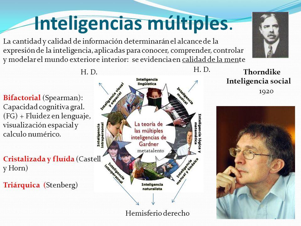 Inteligencias múltiples. Hemisferio derecho H. D. metatalento Thorndike Inteligencia social 1920 La cantidad y calidad de información determinarán el