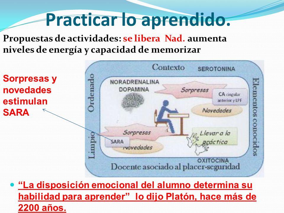 Practicar lo aprendido. Propuestas de actividades: se libera Nad. aumenta niveles de energía y capacidad de memorizar La disposición emocional del alu