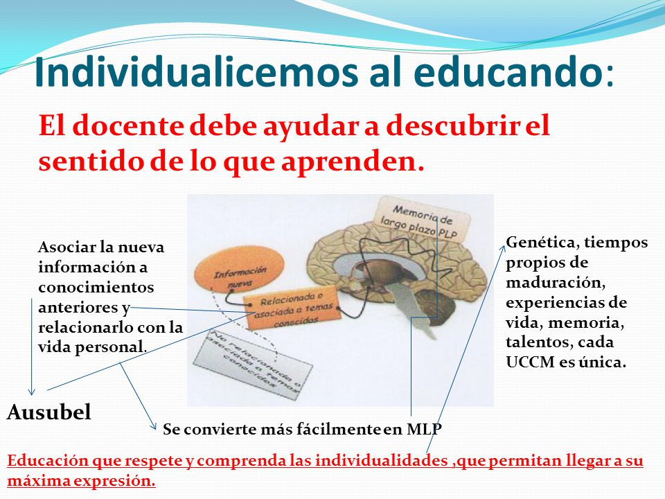 Individualicemos al educando: El docente debe ayudar a descubrir el sentido de lo que aprenden. Asociar la nueva información a conocimientos anteriore