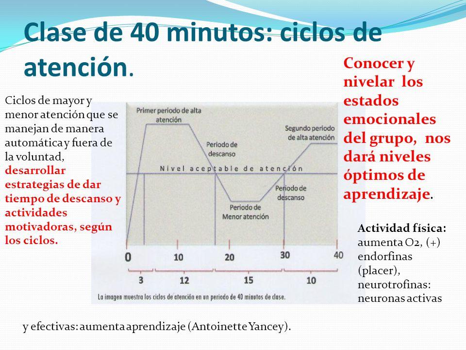 Clase de 40 minutos: ciclos de atención. Ciclos de mayor y menor atención que se manejan de manera automática y fuera de la voluntad, desarrollar estr