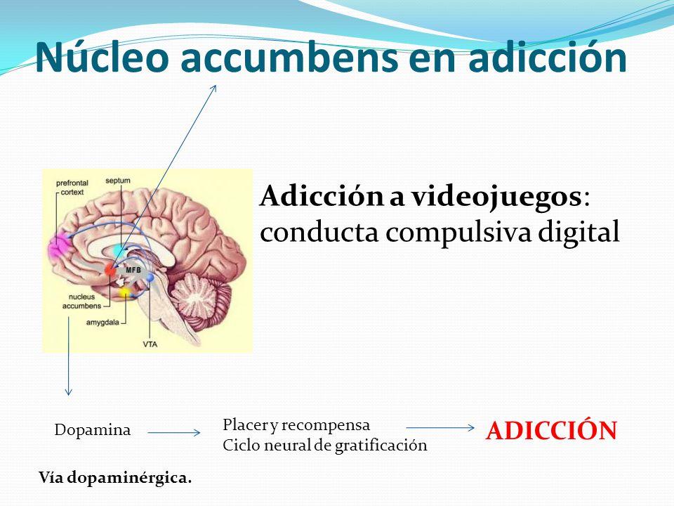 Núcleo accumbens en adicción Dopamina Placer y recompensa Ciclo neural de gratificación ADICCIÓN Vía dopaminérgica. Adicción a videojuegos: conducta c
