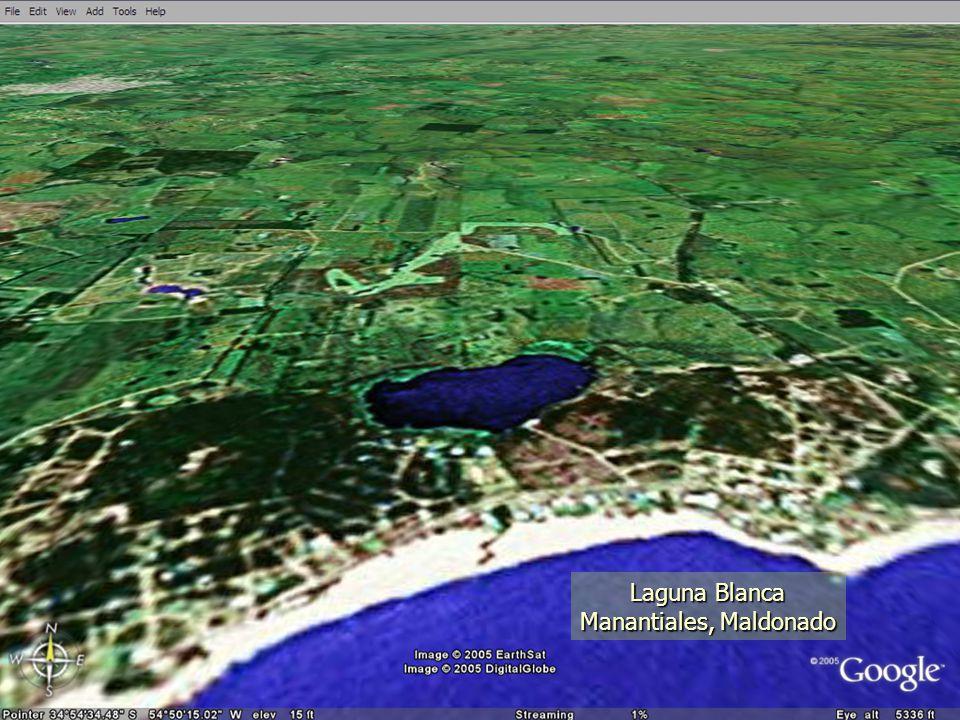 Laguna Blanca Manantiales, Maldonado