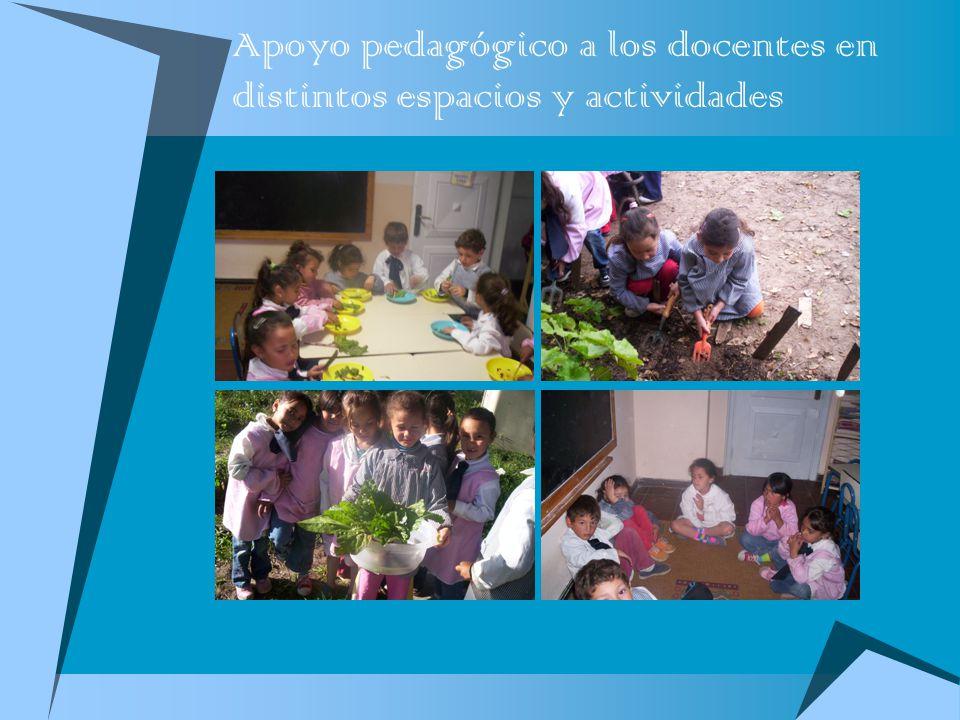 Apoyo pedagógico a los docentes en distintos espacios y actividades