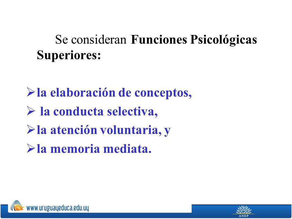 Se consideran Funciones Psicológicas Superiores: la elaboración de conceptos, la conducta selectiva, la atención voluntaria, y la memoria mediata.