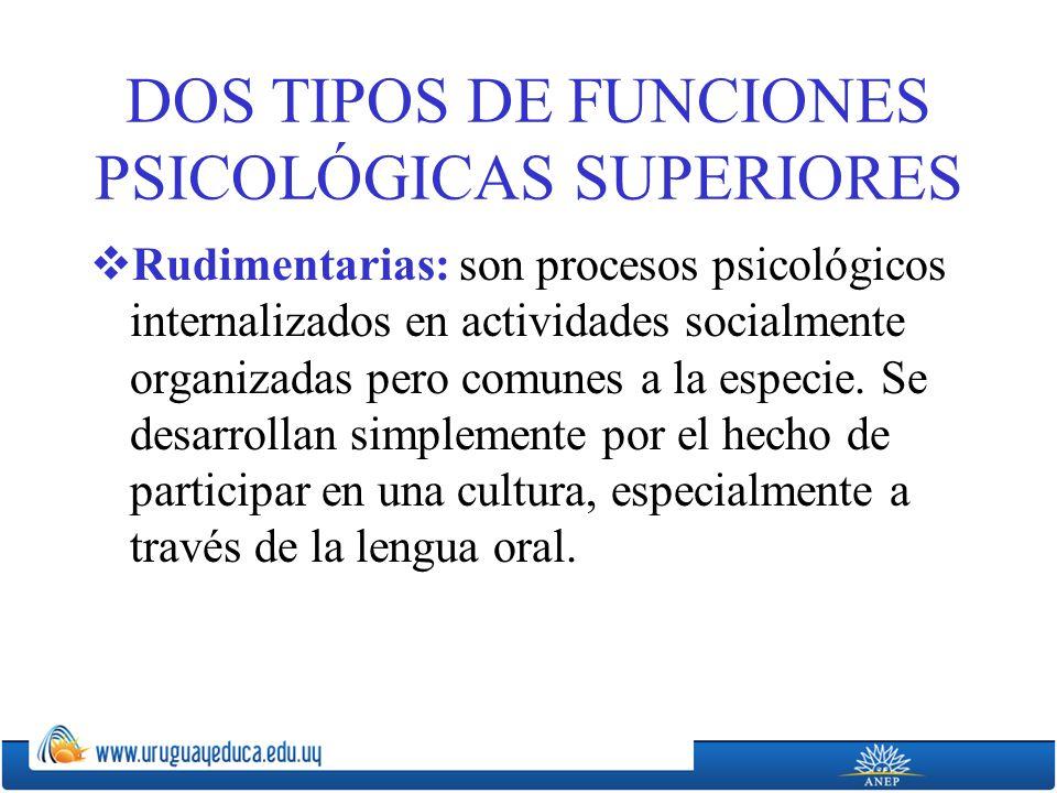 DOS TIPOS DE FUNCIONES PSICOLÓGICAS SUPERIORES Rudimentarias: son procesos psicológicos internalizados en actividades socialmente organizadas pero comunes a la especie.