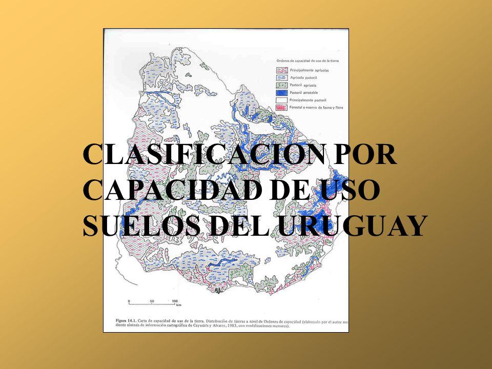CLASIFICACION POR CAPACIDAD DE USO SUELOS DEL URUGUAY