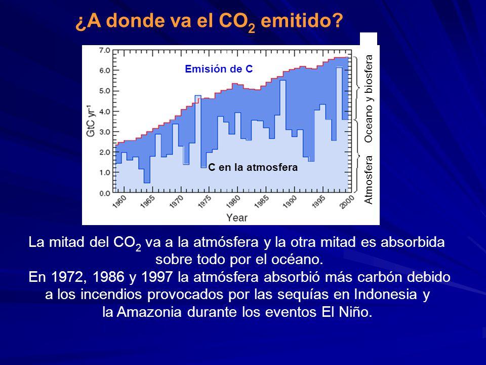 ¿A donde va el CO 2 emitido? Emisión de C C en la atmosfera La mitad del CO 2 va a la atmósfera y la otra mitad es absorbida sobre todo por el océano.