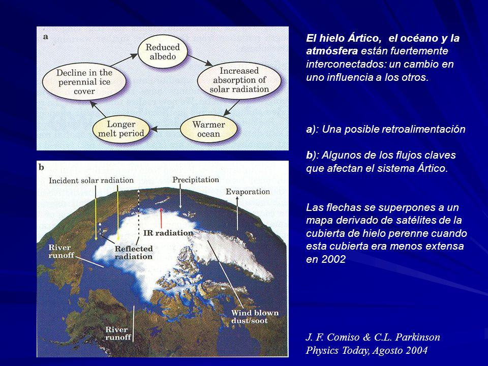 El hielo Ártico, el océano y la atmósfera están fuertemente interconectados: un cambio en uno influencia a los otros. a): Una posible retroalimentació