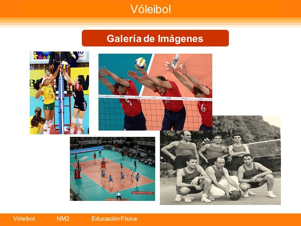 Vóleibol NM2 Educación Física Vóleibol Galería de Imágenes