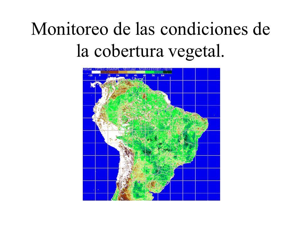 Monitoreo de las condiciones de la cobertura vegetal.